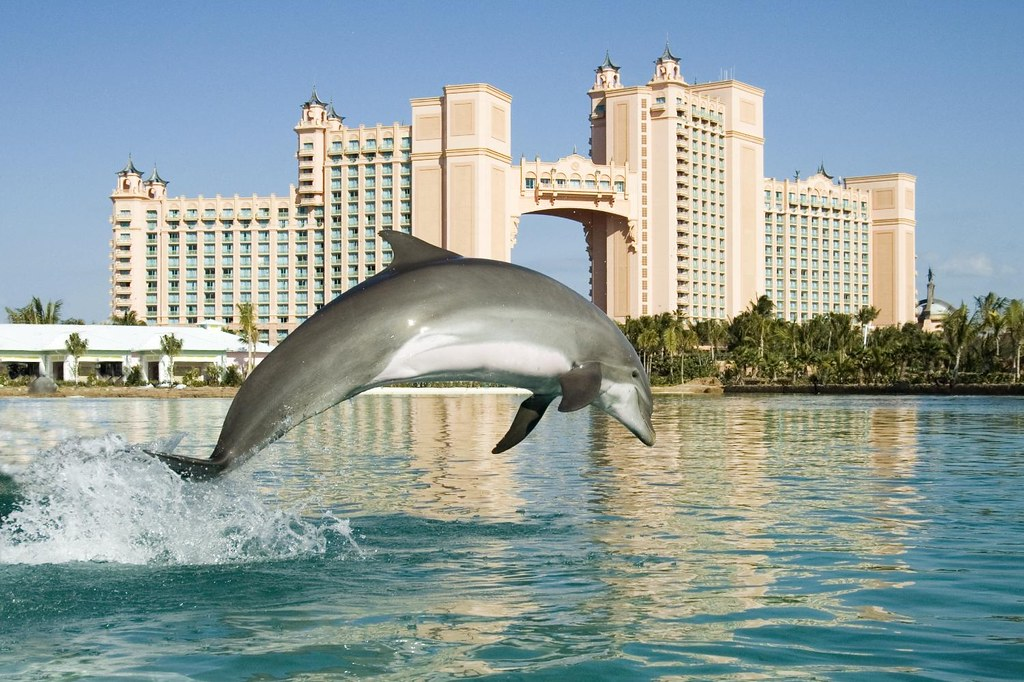 Atlantis Resort Paradise Island Dubai
