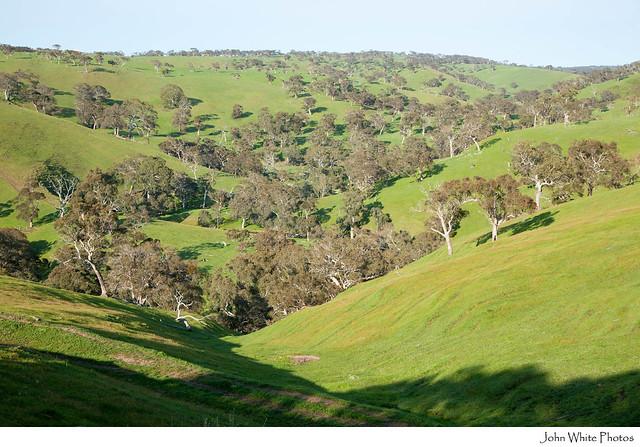 Adelaide hills flickr photo sharing for Adelaide hills landscape