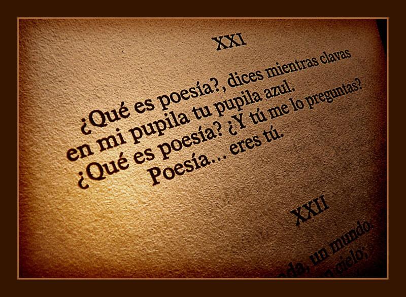 Frase De Amor Y Desamor Miercoles 17 08 2011 Www Buscarp Flickr