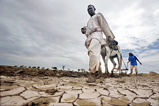 Displaced Darfuris Farm in Rainy Season | by United Nations Photo