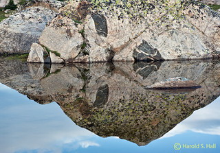 Mirror Reflection | by Harold Hall