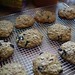 Blueberry scones - Out of the oven