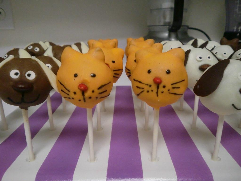 Ginger Cat Cake Pops Made For The Irvine Shelter Adoption Flickr