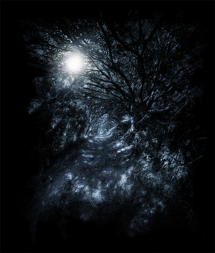 Moonlit | by Andrew P Brooks