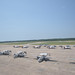 Naval Air Station Pensacola provides safe haven for aircraft.