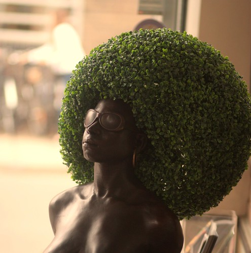 Eco Friendly Afro | by brandy_shot