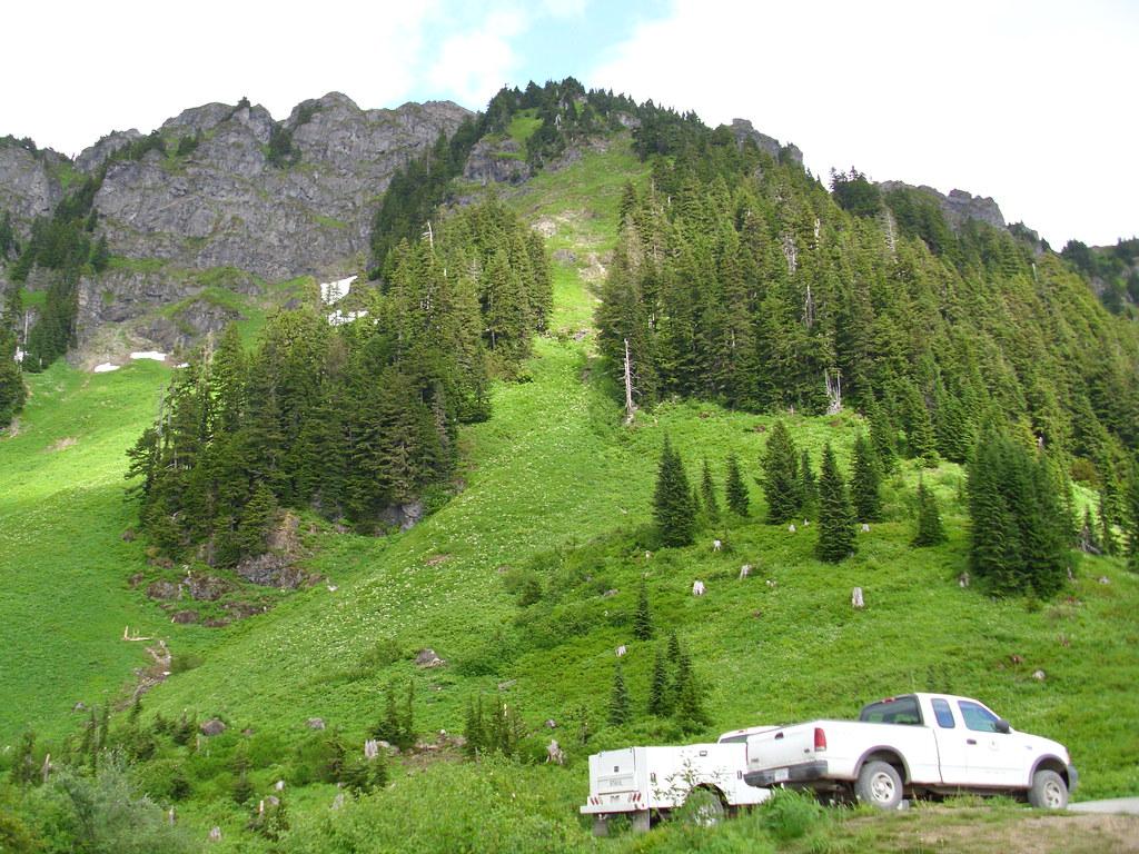 Top Trail Mountain Bike Shoes