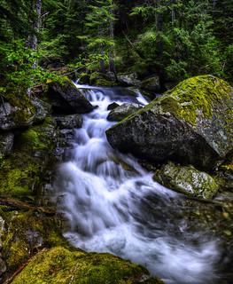 Nickel Creek Cascade | by bern.harrison
