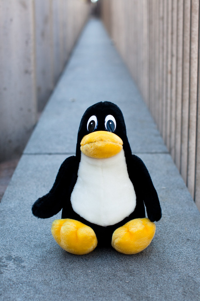Happy Birthday Linux This Famous Penguin Tux Symbolizes T Flickr