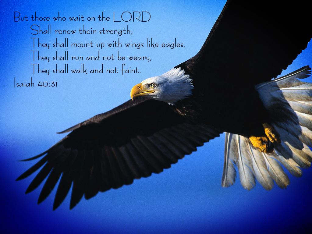 Isaiah 40 31 Isaiah 40 31 Dark by