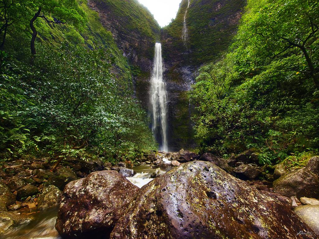 Image result for kauai hiking trail
