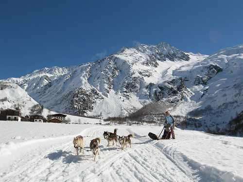 Dogsledding in Chamonix Valley | by Exodus Travels - Reset your compass