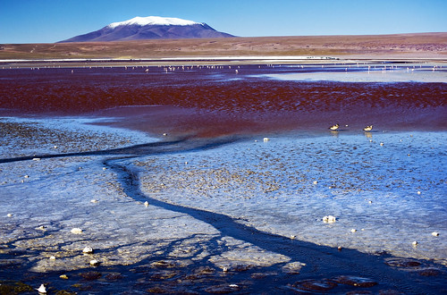 Laguna Colorada - Bolivia | by tigrić