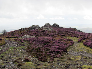 The Stiperstones | by Nikki-ann
