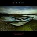 Lone Boat  黑琵の孤舟, 2011  1