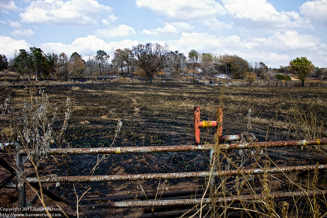 Landscape Destroyed By The Bastrop Complex Fire Flickr