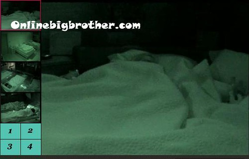 BB13-C2-8-26-2011-8_43_23.jpg | by onlinebigbrother.com
