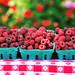 berrylicious raspberries