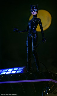 Catwoman doll by Chuck Belich | by Chuck♥Belich