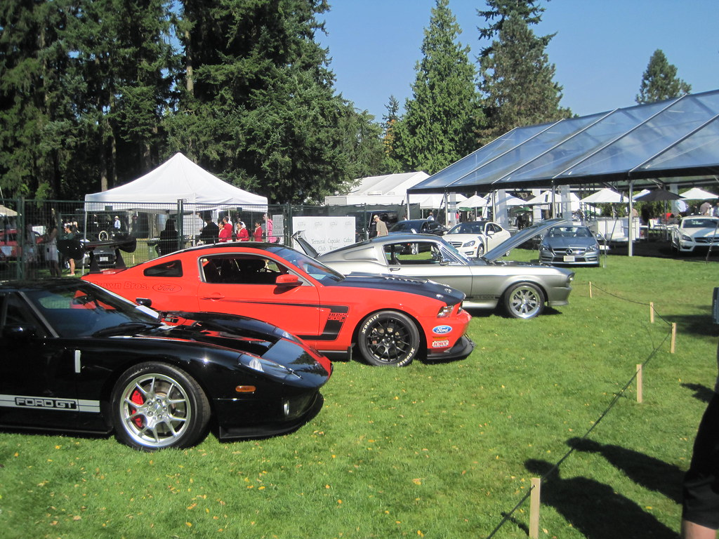 Ford Gt Boss  Race Car And Gt Eleanor By Sean Ohara