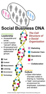Social Business DNA | by Intersection Consulting