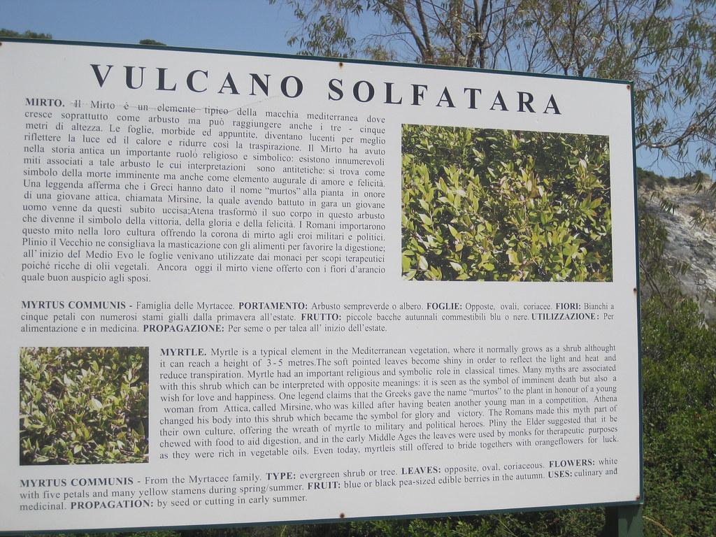 Albero Con Fiori Bianchi sign explaining about vegetaion on solfatara | solfatara