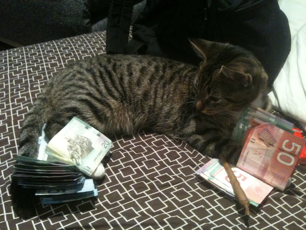 pussy-money-weed-free-teenboys-pics