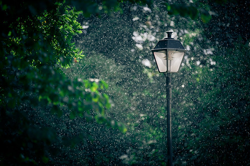Summer Rain | by Pierre Pocs