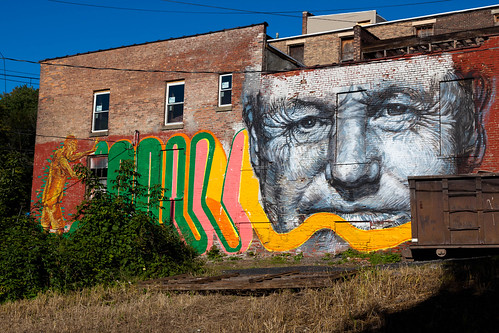 Living Walls - Albany, NY - 2011, Sep - 01.jpg | by sebastien.barre