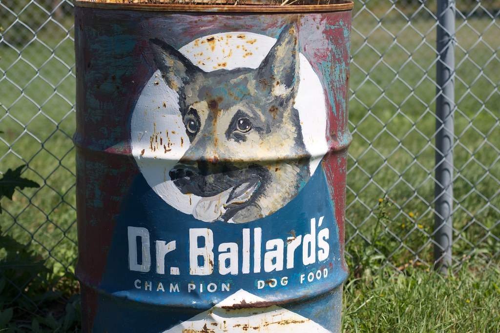 Dog Food That Rats Can Eat