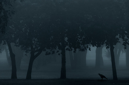 Nevermore | by Mikko Lagerstedt