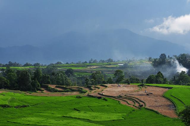 Padang Indonesia Flickr Photo Sharing