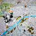 Map Bugs -- # 57/100