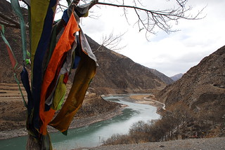 2011 Gesar Fund - Kham Tree with flags (2) | by Gesar Fund