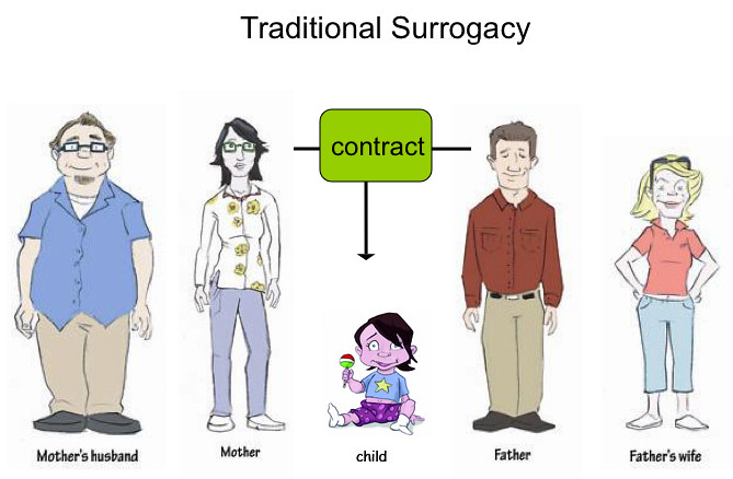 Traditional Surrogacy This Is An Illustration From A