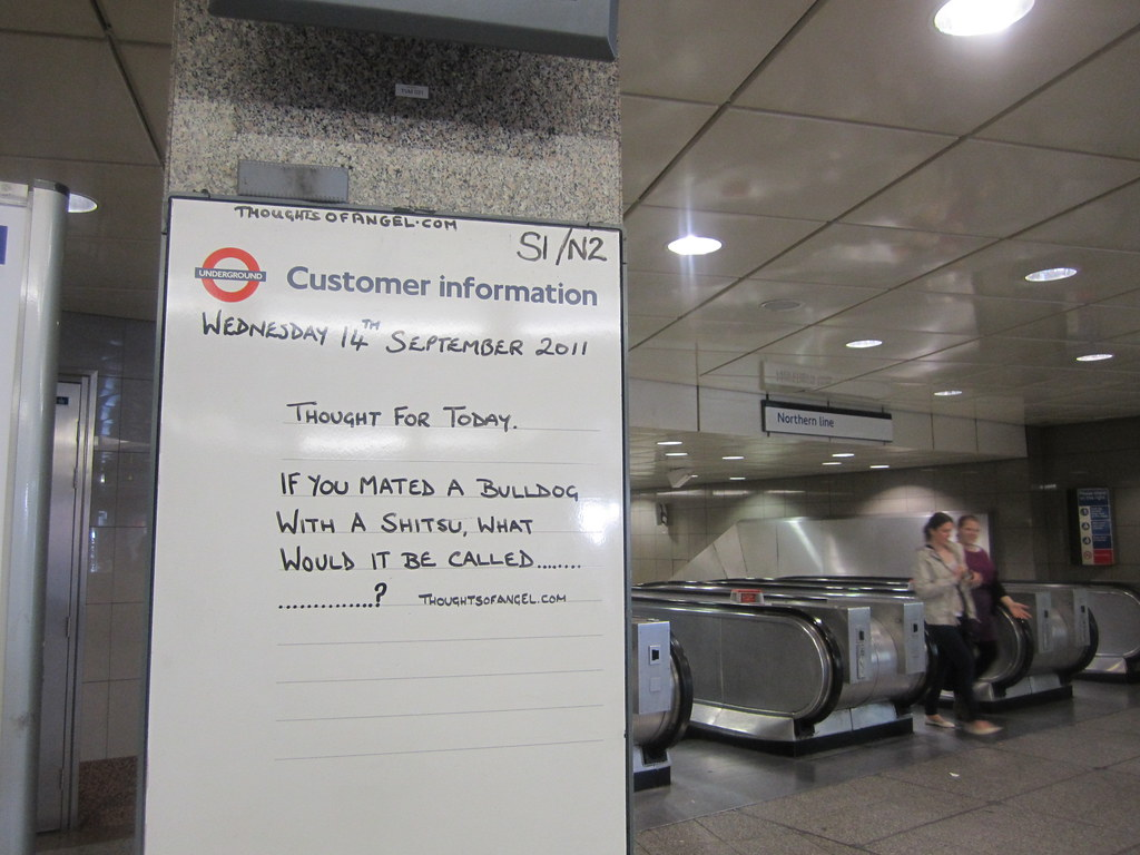 Angel Tube Thought Of The Day - 14th September 2011