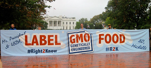 http://www.right2knowmarch.org/ | by MillionsAgainstMonsanto