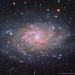 M33 Triangulum Galaxy LRGB+Ha