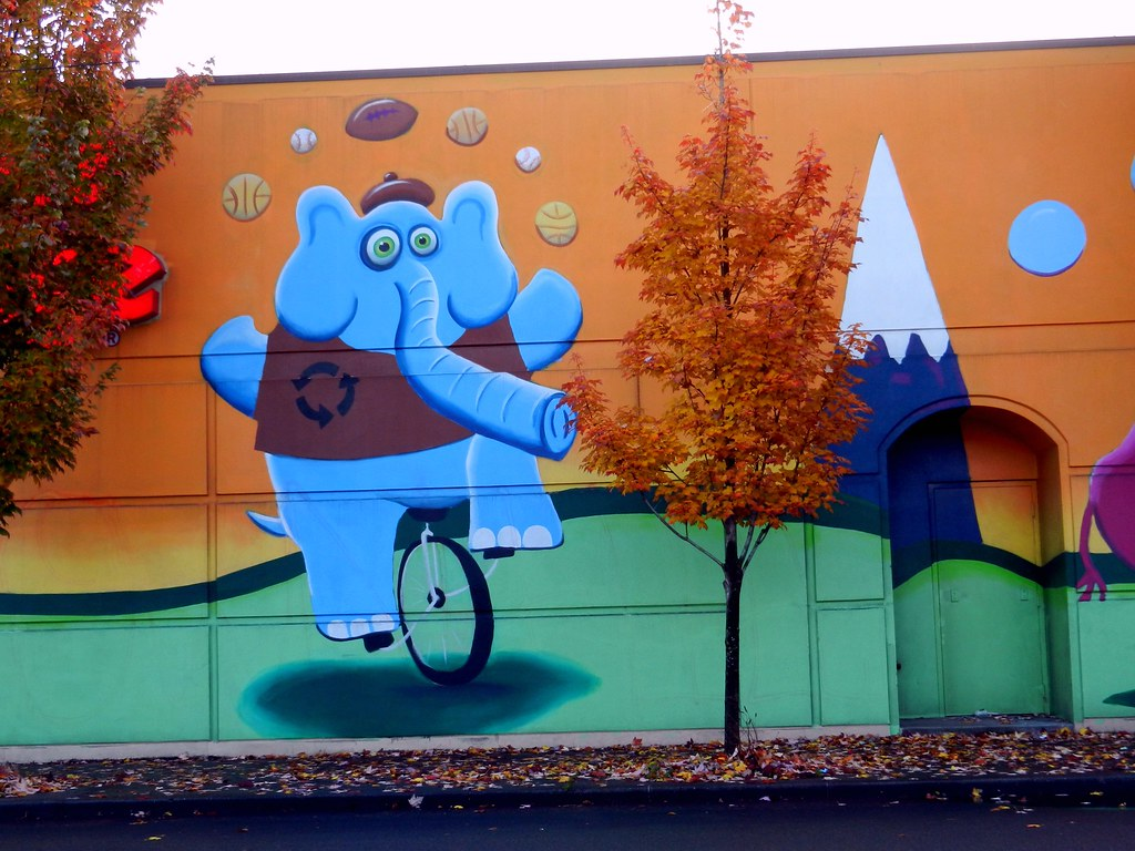 yoippes elliot echo the blue re cycle elephant juggling s flickr elliot echo the blue re cycle elephant juggling sports balls while riding a