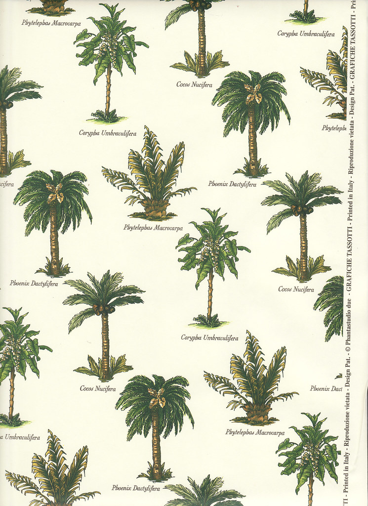 paper palm tree Find palm and other silk trees at nearly natural, the company with over 75 years of experience starting with renowned horticulturist henry friedmen.