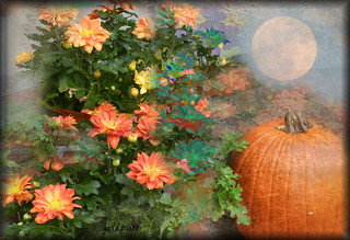 Hunters Moon Oct | by gailpiland