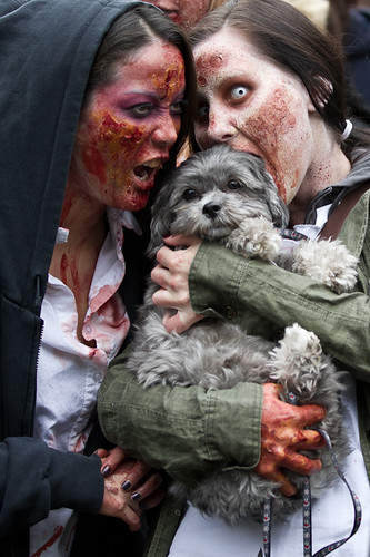 Dog Brains Are Tasty, Toronto Zombie Walk 2011 | by Christopher Brian's Photography