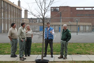 DDOT's John Thomas demonstrates a Tree Watering System | by DDOTDC