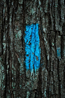Blue Marker | by GHD PHOTOGRAPHY & DESIGN