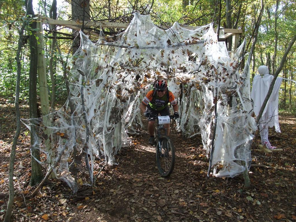 Spider Web Tunnel On Hoyles Mill Trail Mcfeelion Flickr