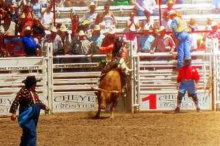 Red-Shirted Bull Rider | by Flickr Goot