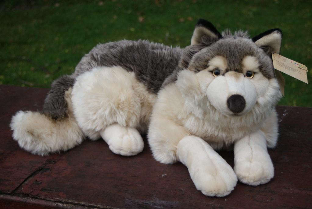 playkids wolf from france stunning quality plush huskyplush flickr. Black Bedroom Furniture Sets. Home Design Ideas