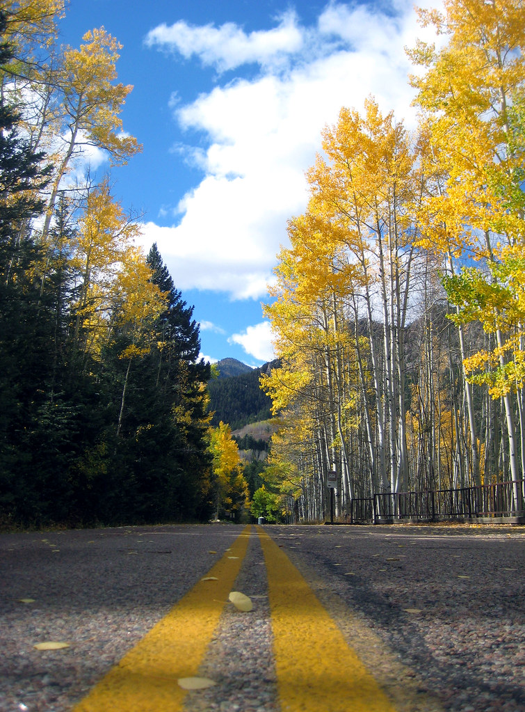 Fall Foliage 2 San Isabel Lake Colorado Bachir