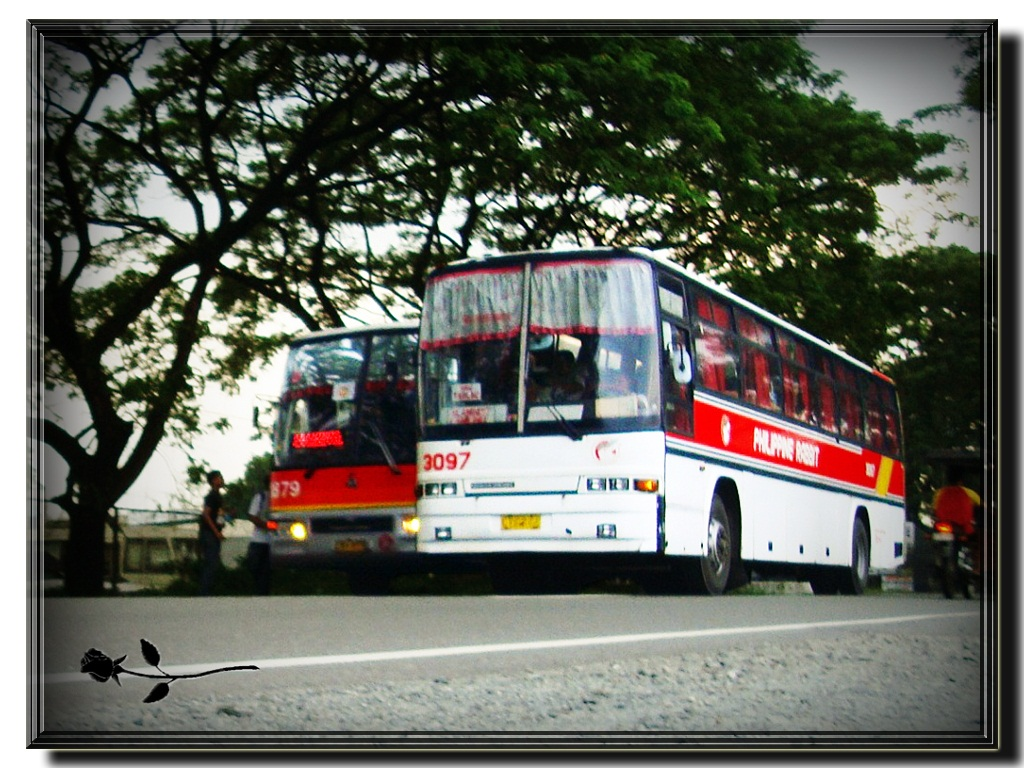 ... PHILIPPINE RABBIT Bus Lines, Inc. - Nissan Diesel NDPC Euro Bus - 3097  