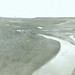 Alberta. Battle River Valley (near Wainwright, Alberta)